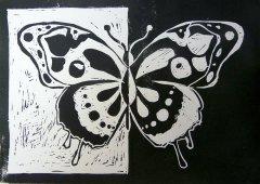 insekten12.jpg